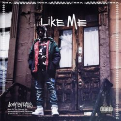 Новое трагичное видео Joey Bada$$ «Like Me» feat. BJ the Chicago Kid
