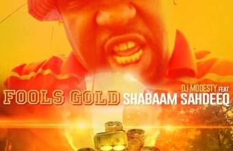 «Золото Дураков». DJ Modesty и Shabaam Sahdeeq с новым видео