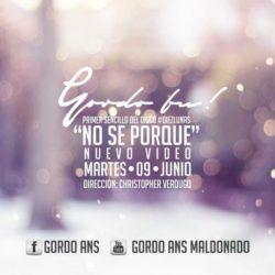 Мексика: мелодичное видео от GORDO FU
