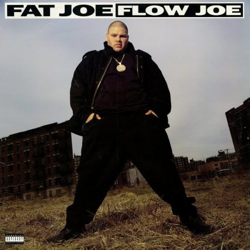 Fat Joe «Flow Joe» (1993)
