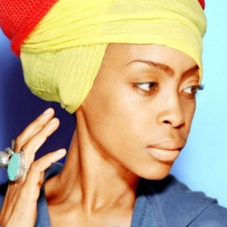 jazz-in-the-gardens_2015_set_times_miami_erykah-badu