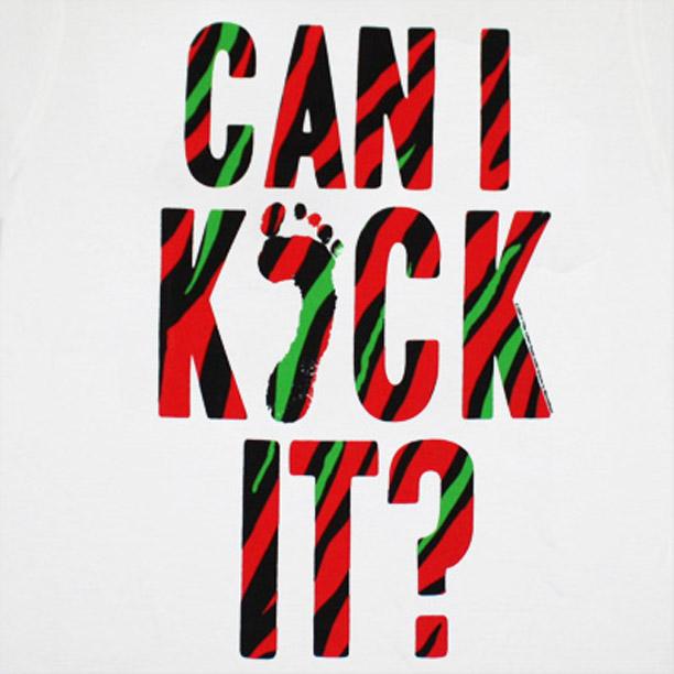 can-i-kick-it