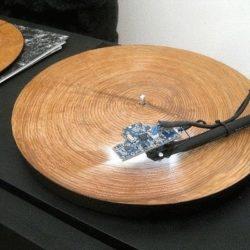 Грампластинки из дерева