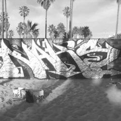 Видео из Калифорнии от 60 EAST