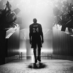 60 очков забил Kobe Bryant в своём прощальном матче (видео)