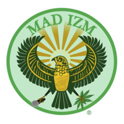 Hakim Green (Channel Live), KRS-One и Steele (Smif-N-Wessun) с новым треком «What Is Madizm?