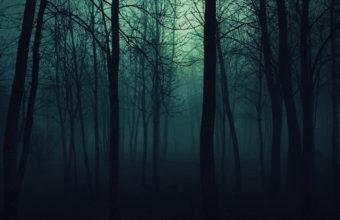 Schemaposse «Ch.2: NightFall»
