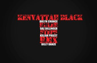 На одном треке Daz Dillinger, Killah Priest, Billy Danze (M.O.P.), Kenyattah Black, BKlyn Chance «Ruler Steps» (Remix)