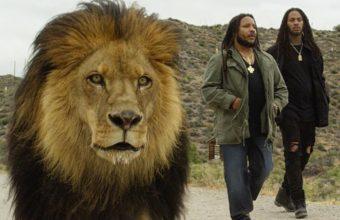 Stephen Marley экранизирует треки с нового альбома, на этот раз -Scars On My Feet-, при участии Waka Flocka Flame