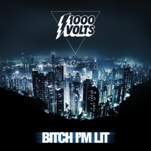 Redman презентовал трек «Bitch I'm Lit» с предстоящего релиза 1000volts