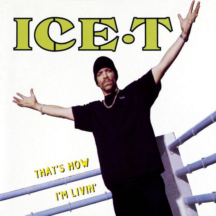 05. Ice-T