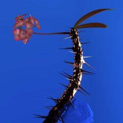 Flume — «Skin Companion EP II»