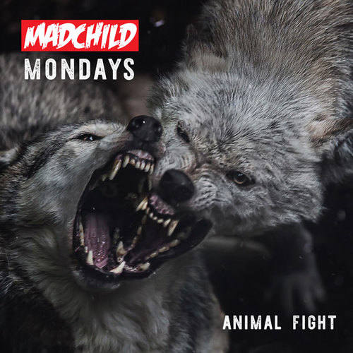 Madchild презентует по понедельникам свежие треки и вот новый «Animal Fight»