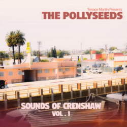 The Pollyseeds feat. Chachi «Intentions»