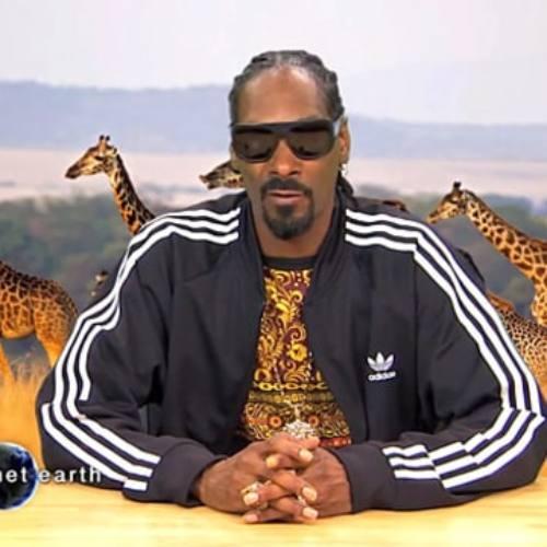 Snoop Dogg исполнил новый трек на шоу Джимми Киммела