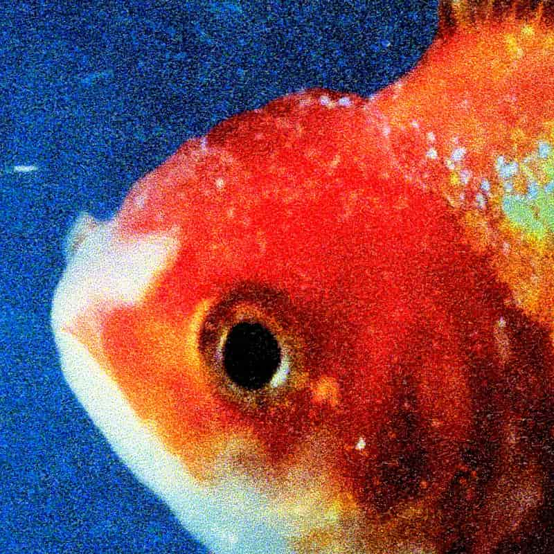 Vince Staples – «Big Fish Theory»