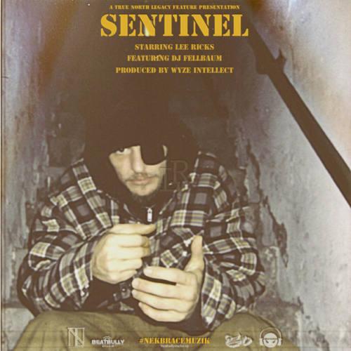 Прокачайтесь новым видео на трек Lee Ricks & Wyze Intellect «SENTINEL»