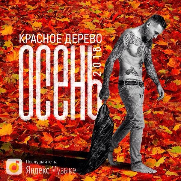 Премьера трека: Красное Дерево «Осень 2018»
