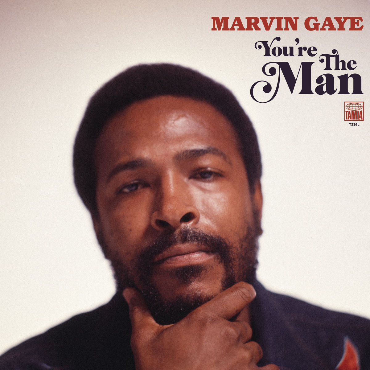 Marvin Gaye — «You're The Man»