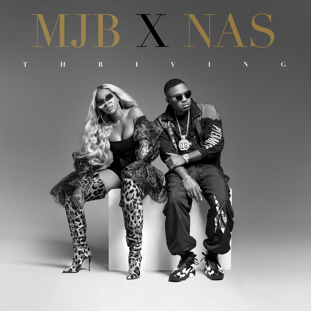 Mary J. Blige & Nas – «Thriving»