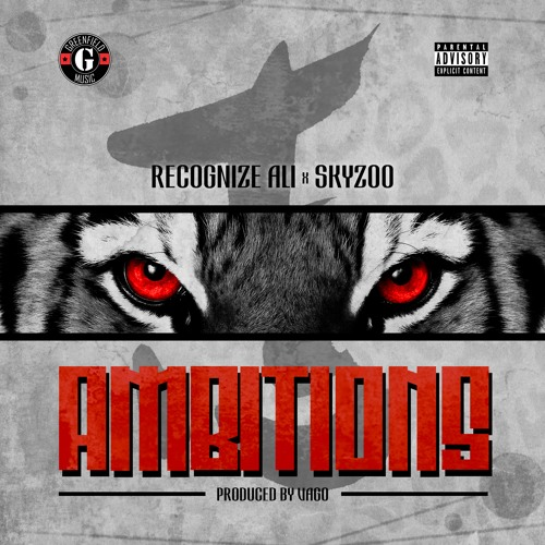 Recognize Ali x Skyzoo — «Ambitions»