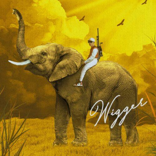 HASH TAG — «WIGGER»
