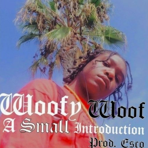 WooF — «A Small Introduction»